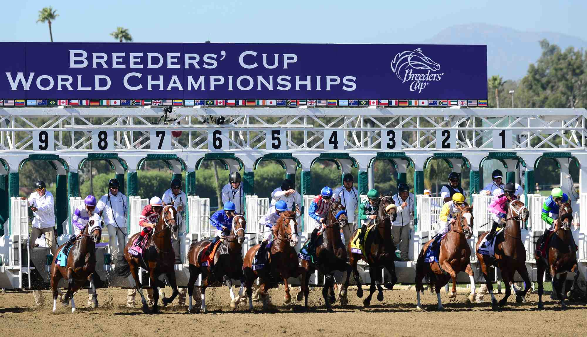 FanDuel Announces Sponsorship Deal With Breeders' Cup
